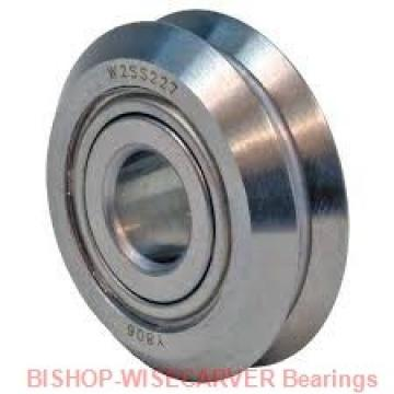 BISHOP-WISECARVER SS-RLJ-54-D-E-DR-NS  Ball Bearings