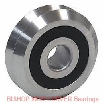 BISHOP-WISECARVER SSTHJ95CNS  Ball Bearings